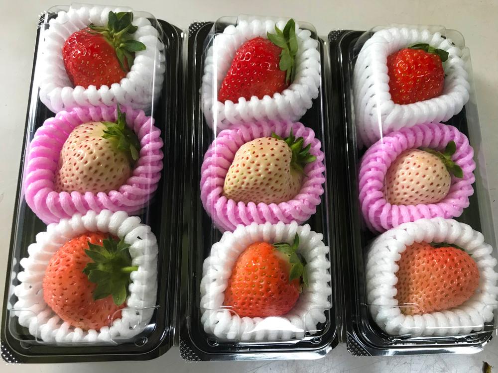 3種のイチゴを食べ比べ! イメージ